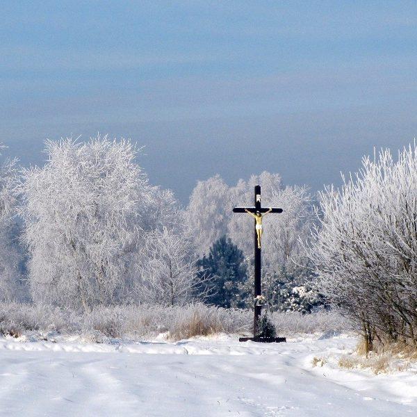 Na granicy Smolarni i Dziedzic (styczeń 2009 r.)