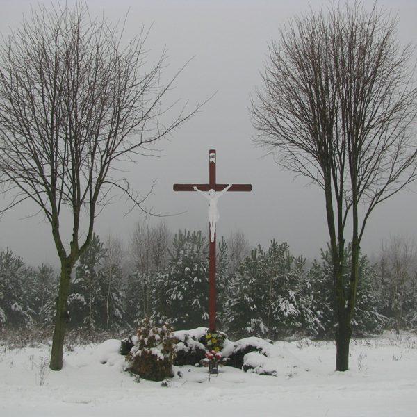 W Serwitucie (grudzień 2010 r.)