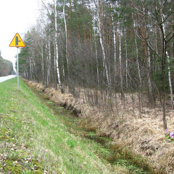 Miejsce wypadku przy drodze wojewódzkiej z widocznym po prawej stronie krzyżem