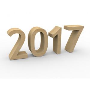 Podsumowanie działalności za 2017 rok
